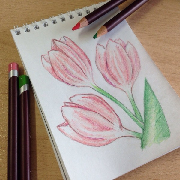 некоторое красивые рисунки карандашом цветным простые пояснил