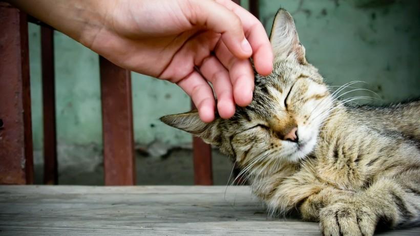 10 упражнений на развитие эмпатии