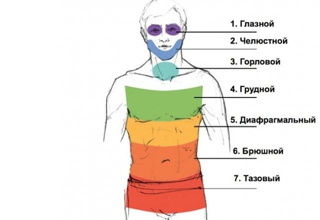 https://psy-practice.com/upload/iblock/8a6/Pantsyr-po-Raykhu.jpg