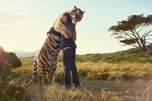 Странная дружба: о том, как важно, «подружиться» с симптомом заболевания